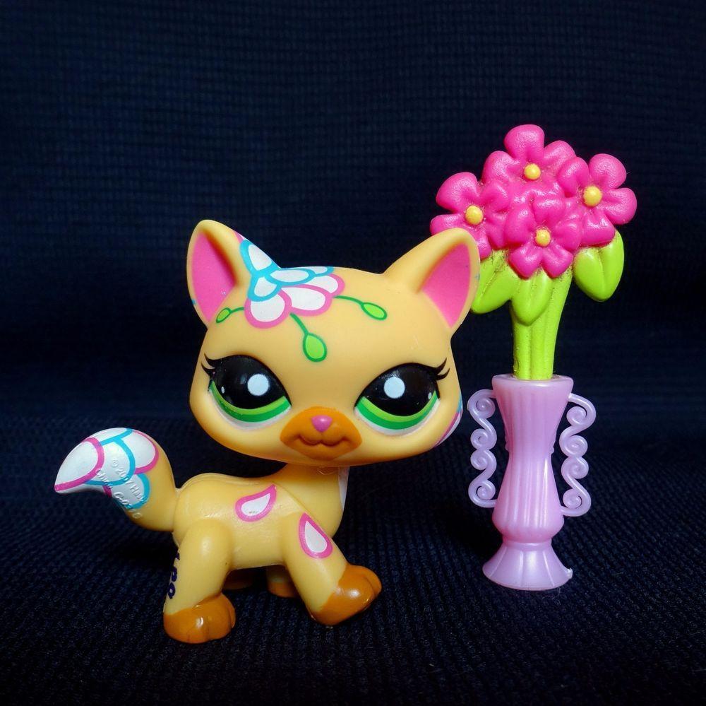 Pin On Littlest Pet Shop Hasbro Figures
