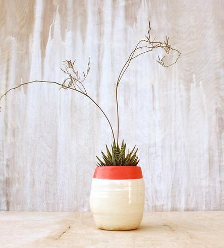 Coral-Dipped Stoneware Planter