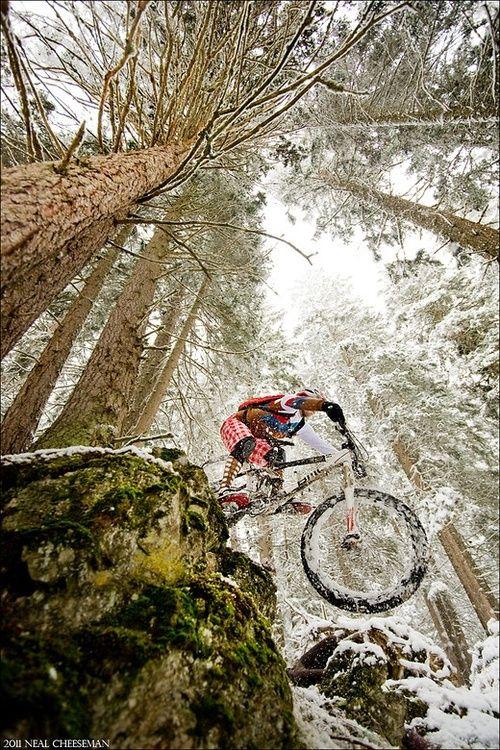 Never stop biking