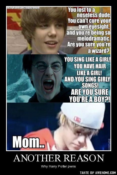 Harry Potter Photo Pwned Harry Potter Puns Harry Potter Jokes Harry Potter Memes