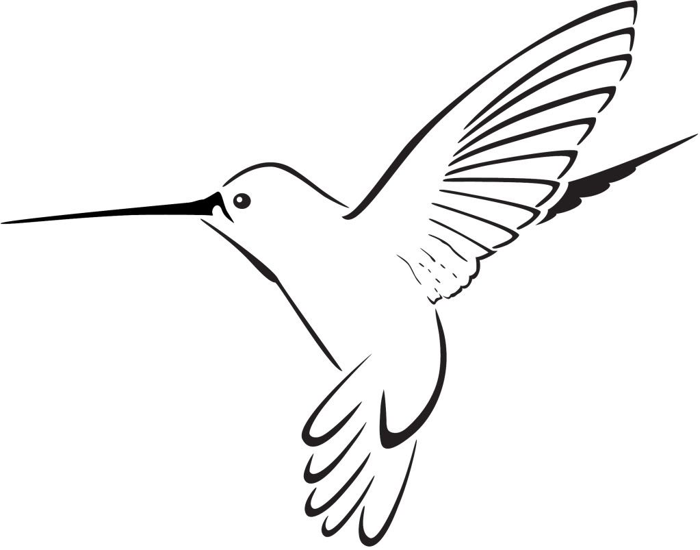 hummingbird clipart clipart panda free clipart images tattoo rh pinterest com hummingbird clip art silhouette hummingbird clip art silhouette