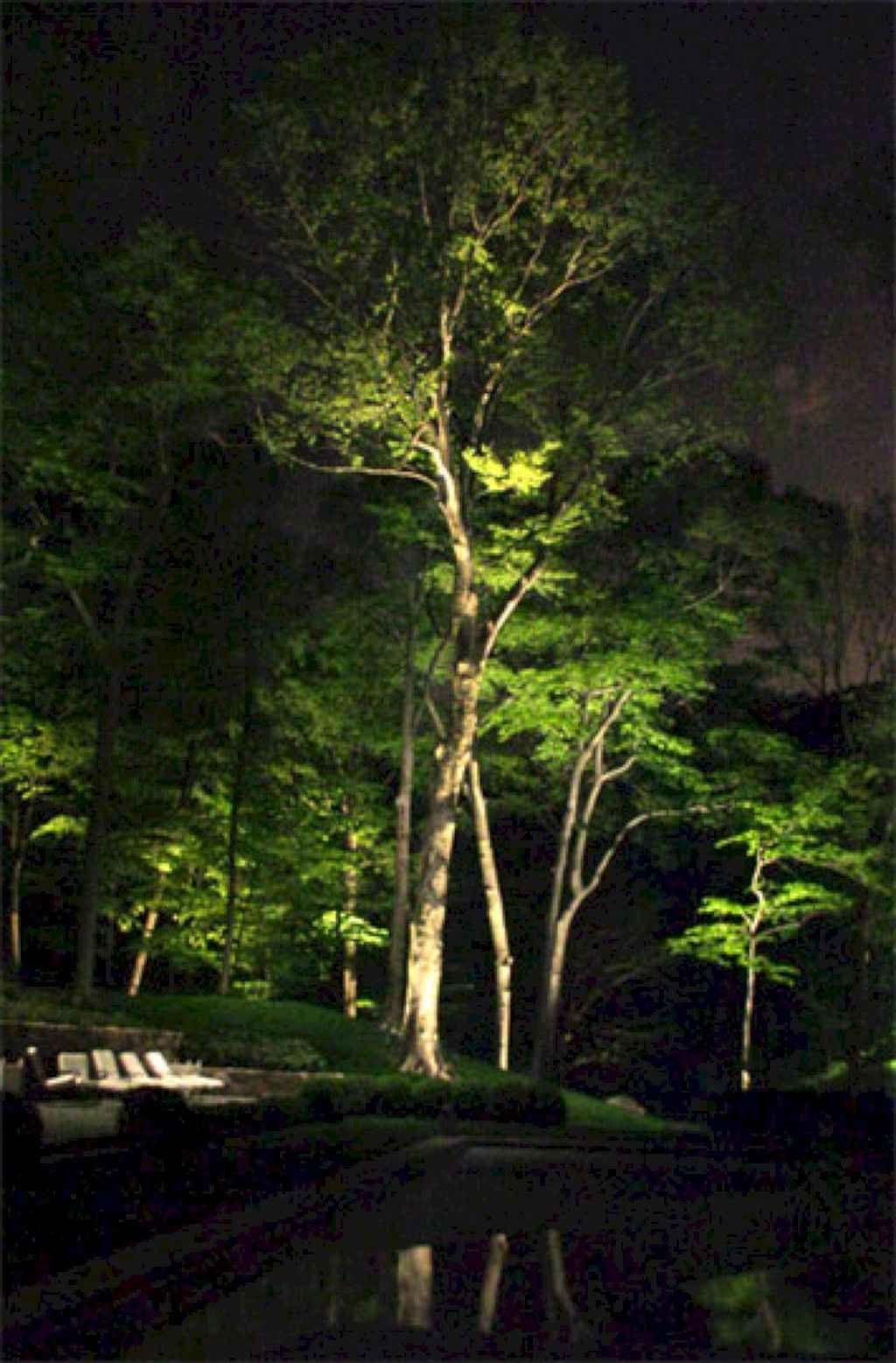 48 Inspiring Backyard Lighting Ideas Garden And Landscaping Outdoor Tree Lighting Landscape Lighting Design Backyard Lighting