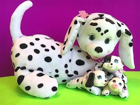 PUPPY SURPRISE JAXIE & HER PUPPIES
