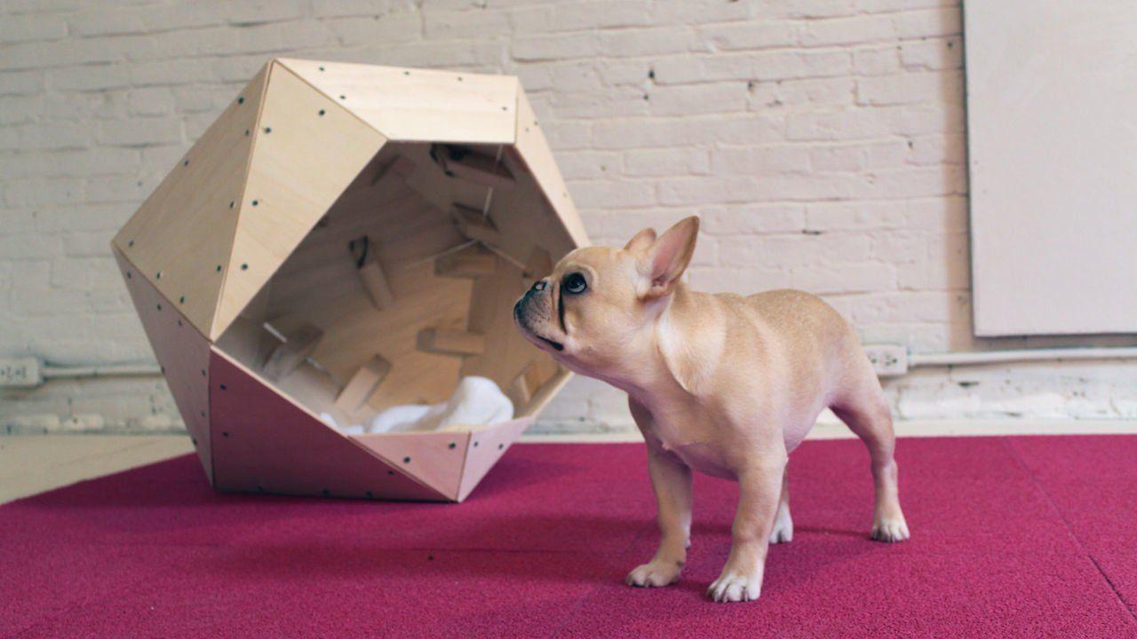 Homemade Modern Episode 13 Diy Geometric Doghouse Homemade Modern Dog Houses Wooden Dog House