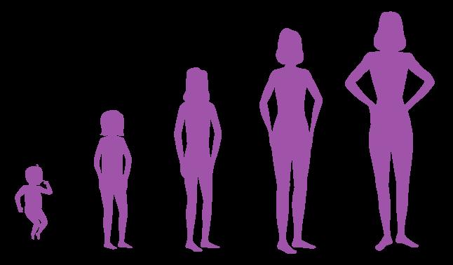 male female sex organ photo in Washington