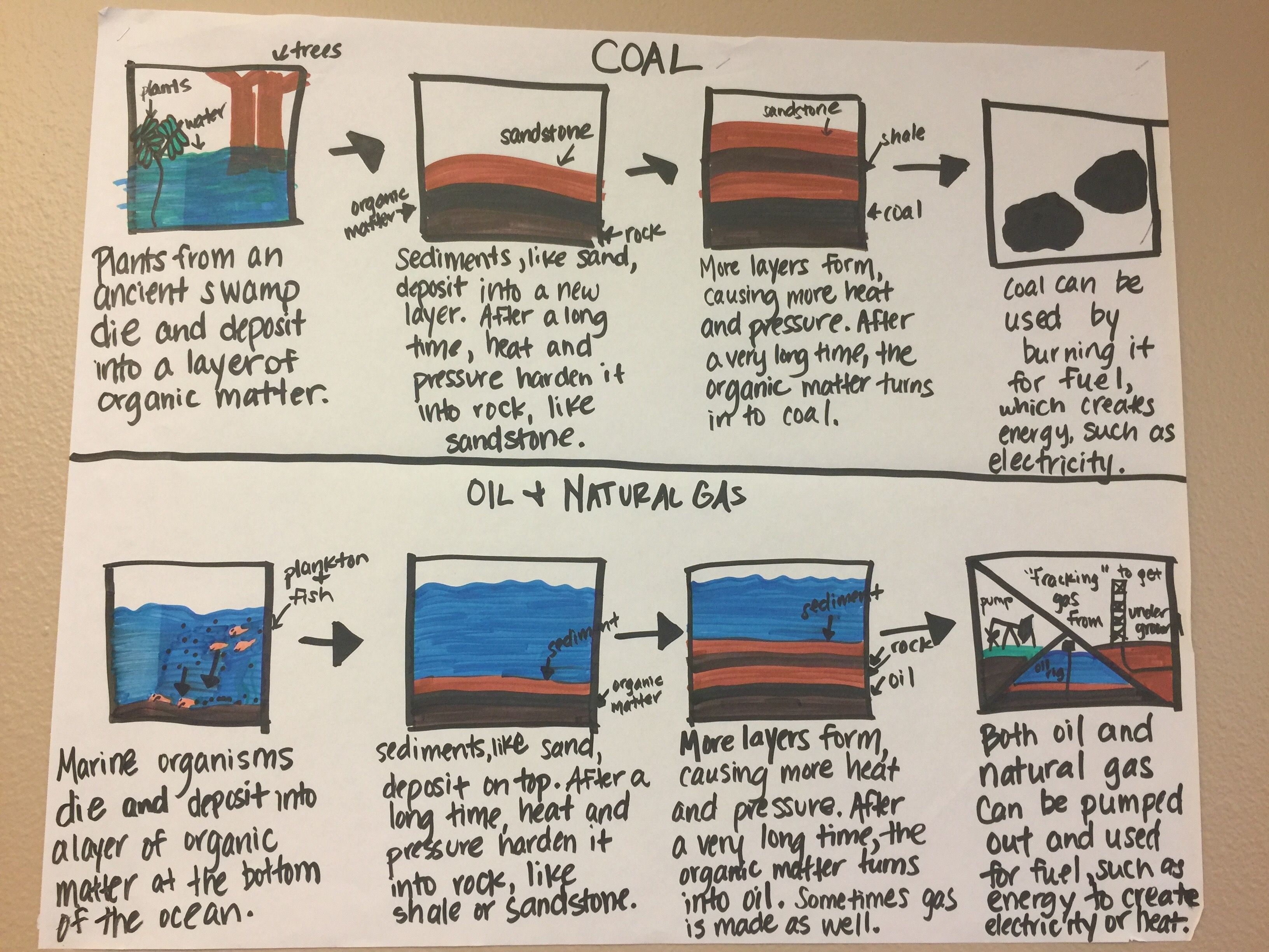 Fossil Fuels Anchor Chart