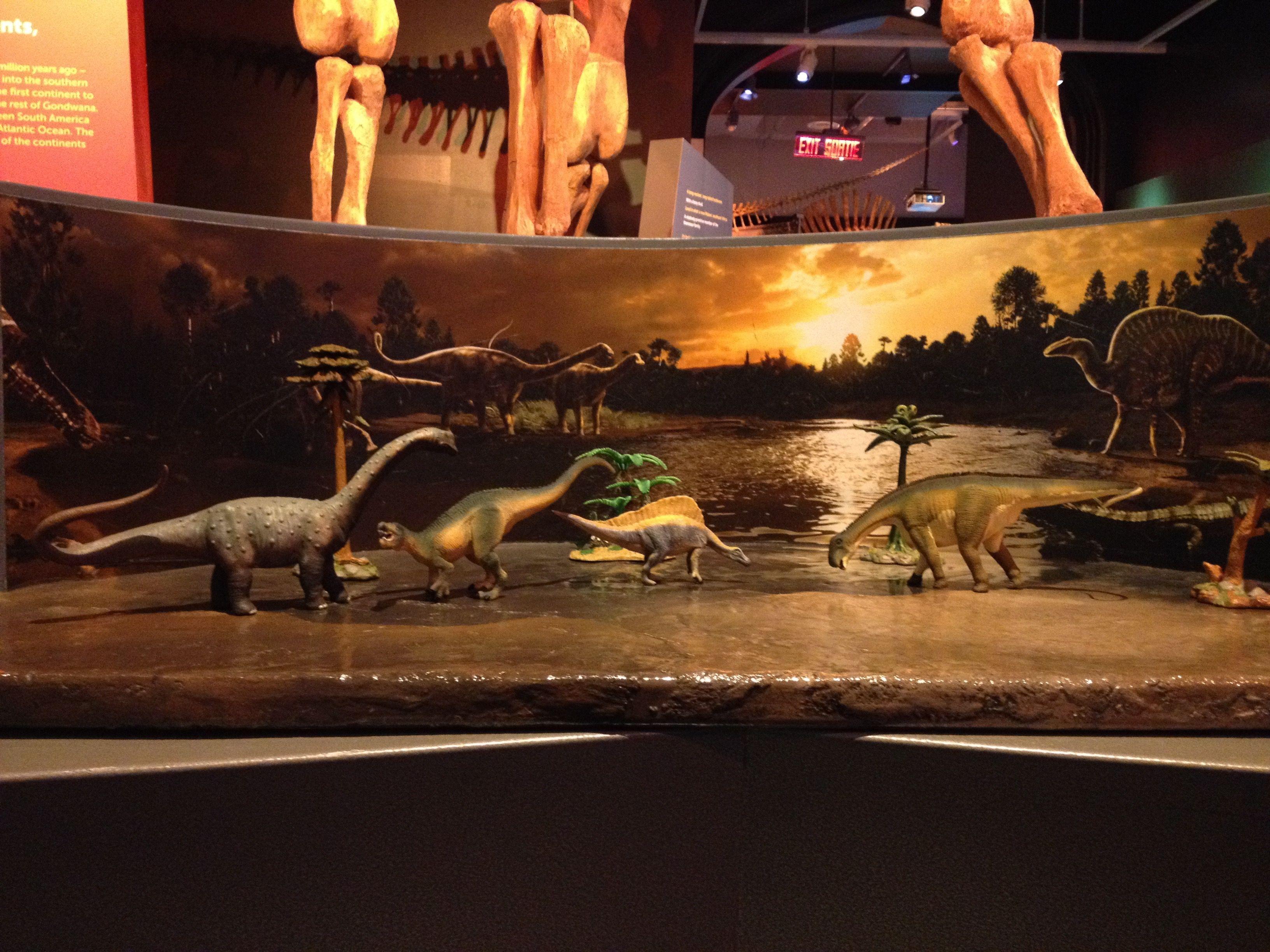 Of Dioramas Ultimate Dinosaurs Exhibit