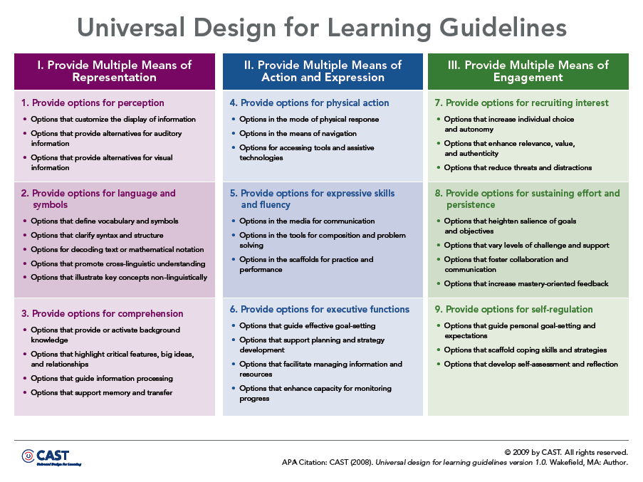 Udl Guidelines Overview Of Udldifferentiated Instruction