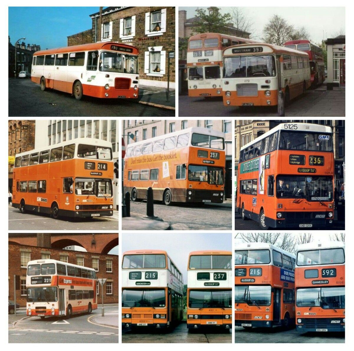 A Selection Of Glossop Depot Buses