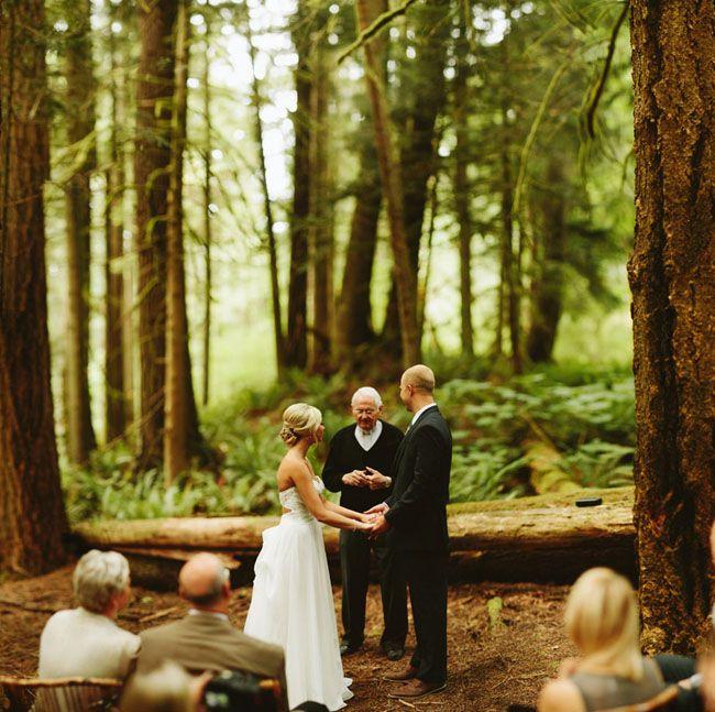 Forest Elopement At Snoqualmie Falls: Samantha + Calen