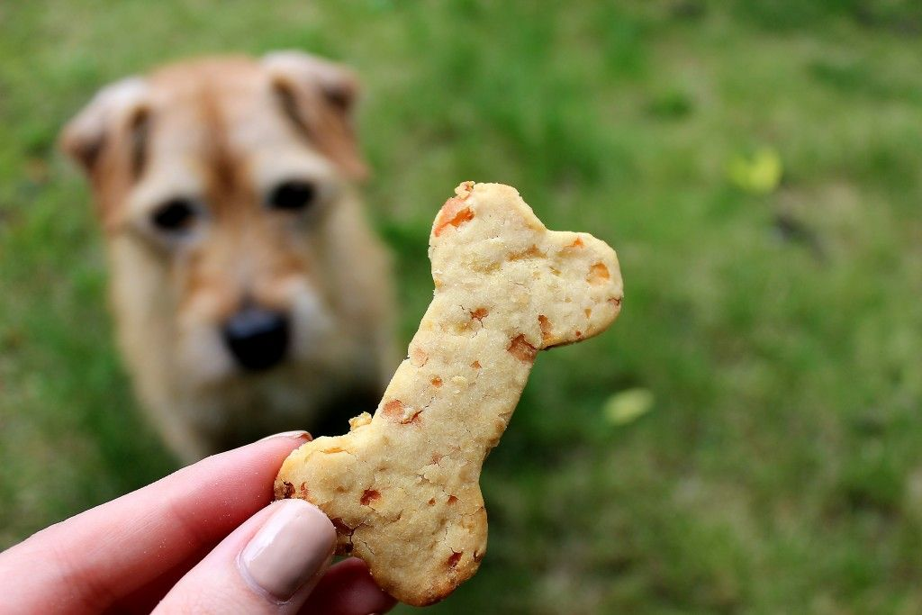Sweet And Spicy Bacon Wrapped Chicken Tenders Dog Biscuits