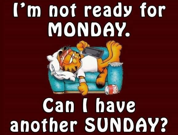 Im Not Ready For Monday Can I Have Another Sunday Awesome