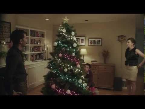 RadioShack DIY Arduino Powered Holiday Lights Video