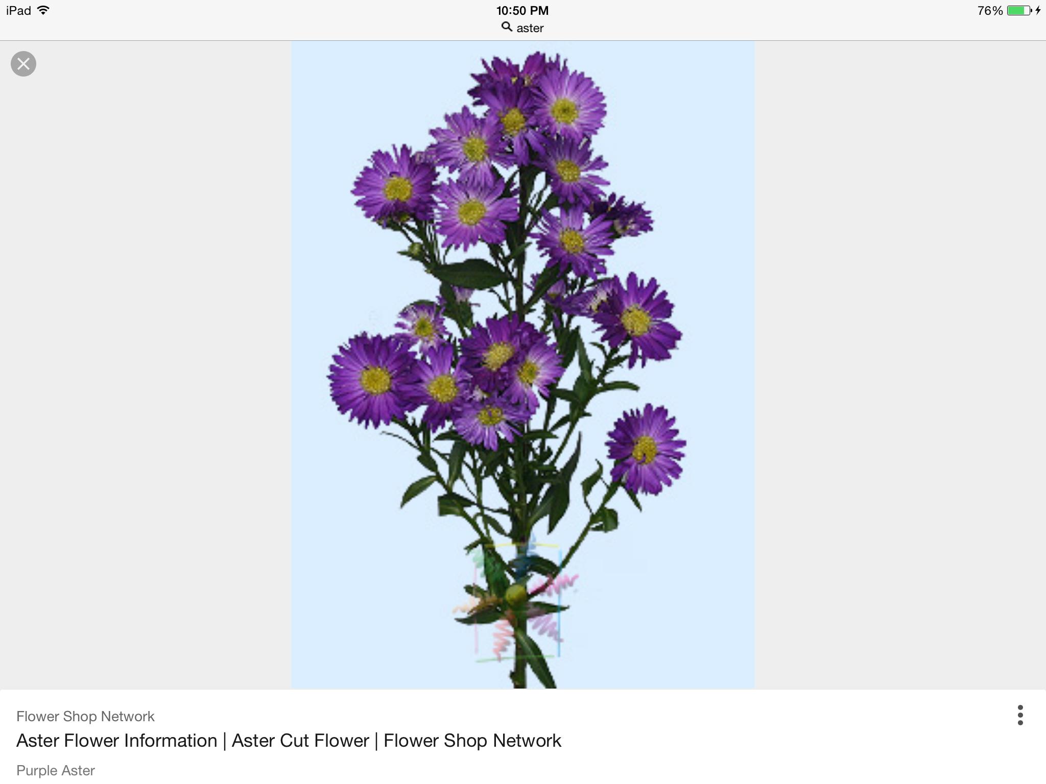 Pin by Rhonda Pearce on flower tattoo Flower
