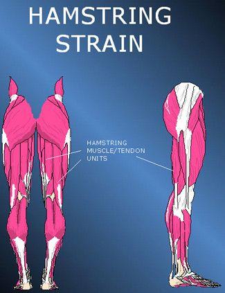 49+ Hamstring problems behind knee ideas