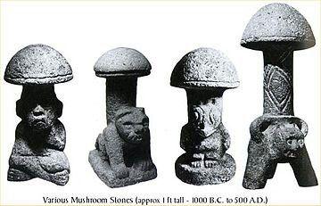 Mayan Mushrooms