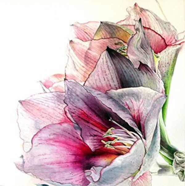 30 beautiful flower drawings art and design