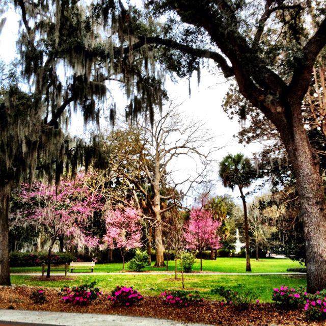 Pin By Visit Savannah On Beautiful Savannah Savannah Chat Beautiful Places To Live Visit Savannah
