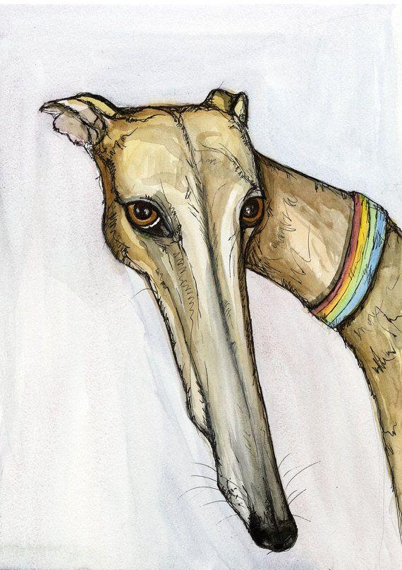 Greyhound Art Dog Print Honden Arte De Galgos Retratos De