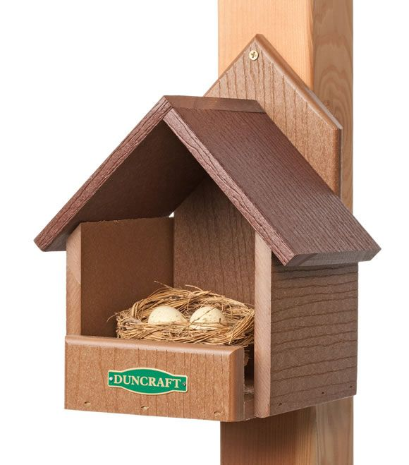 Duncraft 3021 eco friendly cardinal bird for Dove bird house