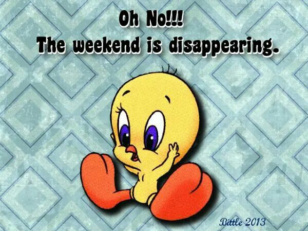 Pin by Joan Hardesty on funny quotes Tweety bird quotes