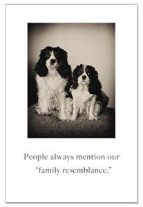 Family Portrait Birthday Card