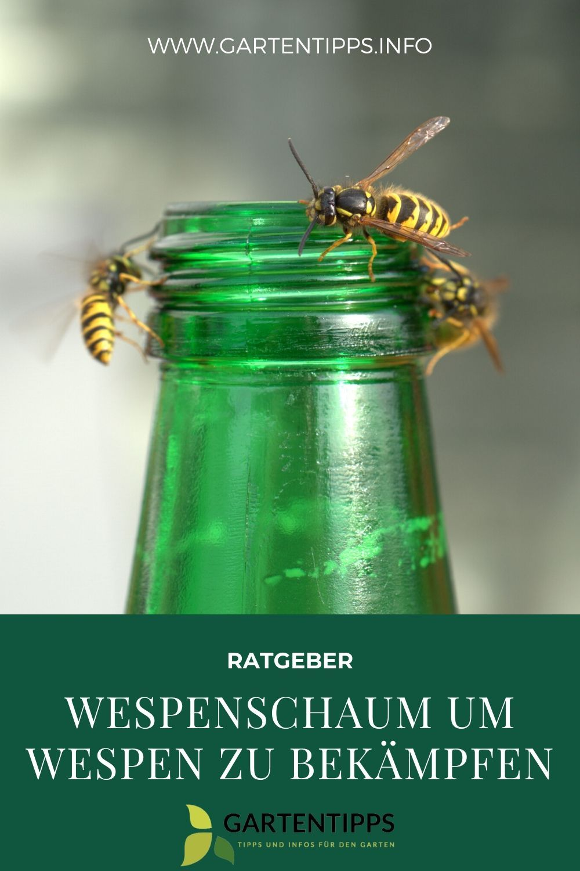 Wespen Effektiv Mit Wespenschaum Bekampfen Wespe Wespen Vertreiben Was Tun Gegen Wespen