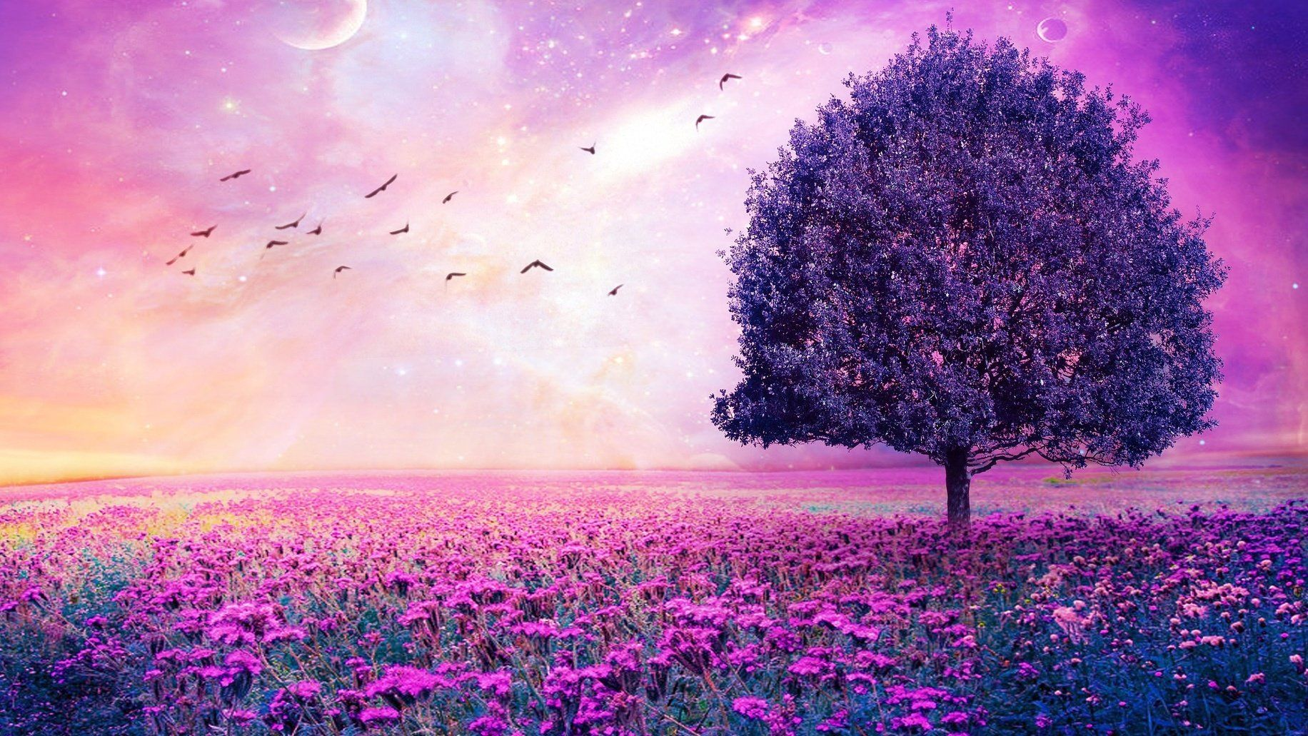 Imagenes Full Hd En 3d Beautiful Tree Girl Wallpaper Wallpaper Pc
