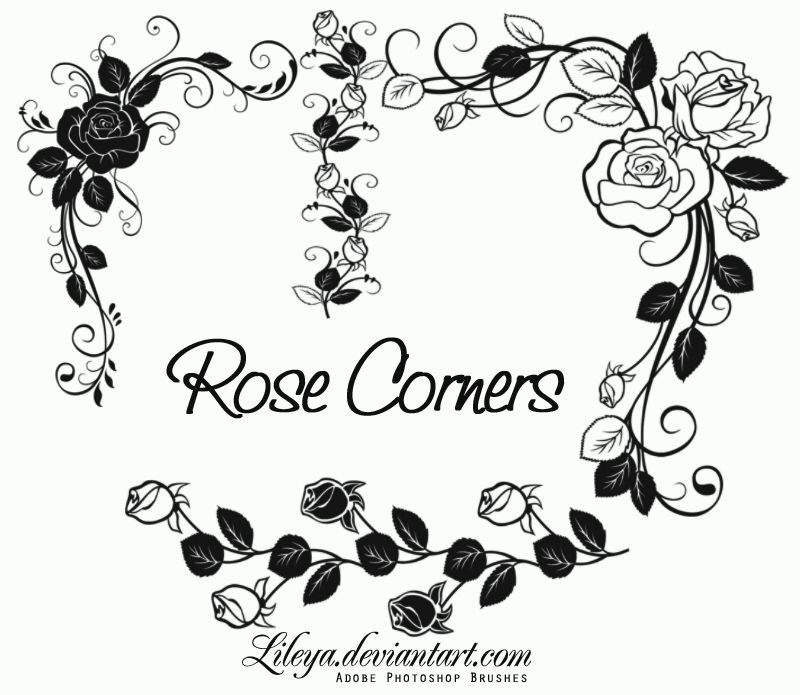 rose corners by lileya deviantart com on @deviantart photoshop House Plan Photoshop Brushes set of brushes for ps cs and higher the terms of use are in my journal house plan photoshop brushes