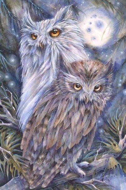 Диана Январева | Нарисовать сову, Чучело совы, Картины с совой