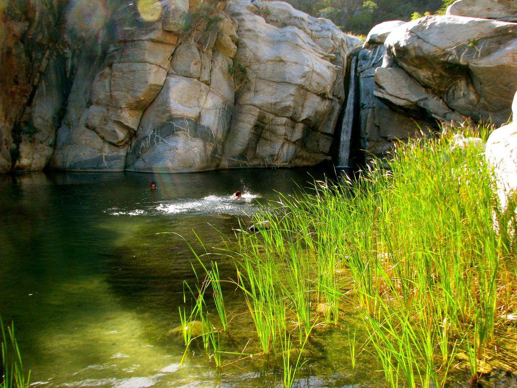 Cañón de la Zorra es un sitio rodeado de vegetación.