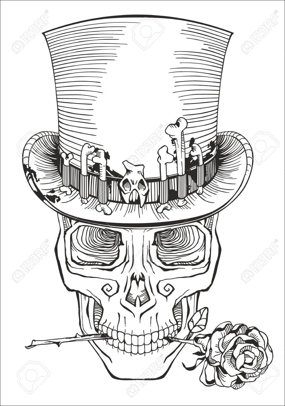 41549819 Human Skull In A Top Hat Stock Vector Jpg 913 1300 Skull Coloring Pages Skull Sketch Skulls Drawing