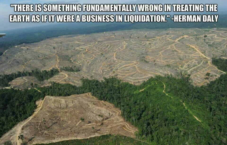 Pin by Joe Gronigan on environment Deforestation