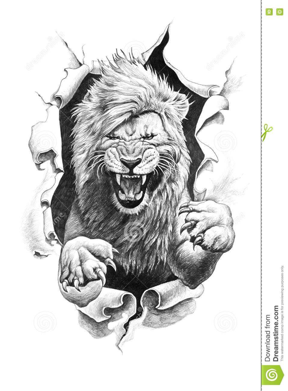 Resultado de imagen para dibujo leon a lapiz  dibujos  Pinterest
