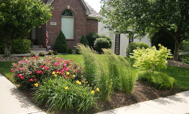 Corner landscape installationpanting daylily rose for Landscaping with zebra grass