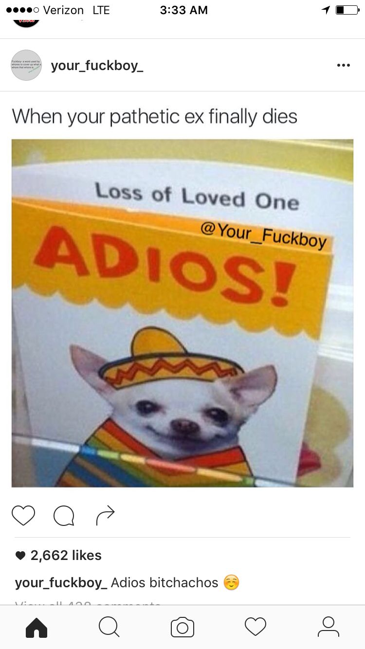 Loss Of A Loved One Adios : loved, adios, Shannon, Funny, Loved, Pictures, Fails,