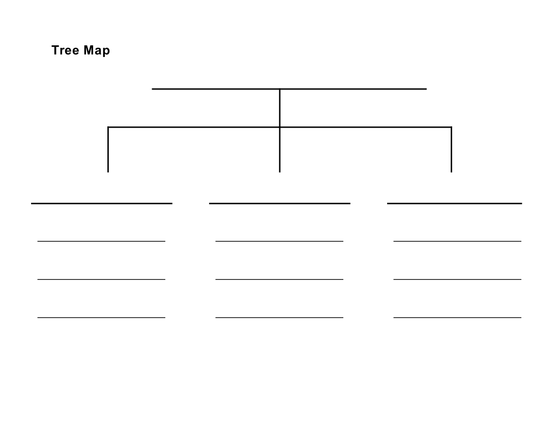 blank tree diagram graphic organizer honeywell thermostat wiring th3210d1004 image result for map template la pinterest