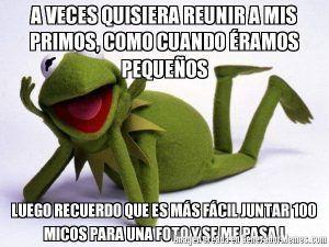 Muy Graciosos Memes De Los Primos Rana Rene Frases Feliz