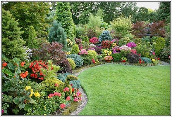 Small Yard Ideas For Planting Of Flowers Trees A Good Use Variety Texture And Depth