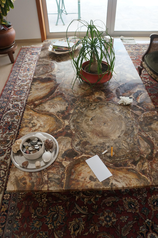 Big Petrified Wood Plate Countertop Desk Table Wood Island