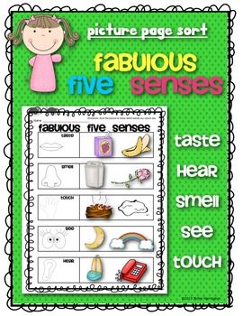 fabulous five senses picture sort science for kindergarten and first grade my tpt board. Black Bedroom Furniture Sets. Home Design Ideas