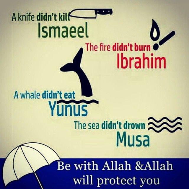 Trust In Islam Quotes: #allah #trust #tawakkul