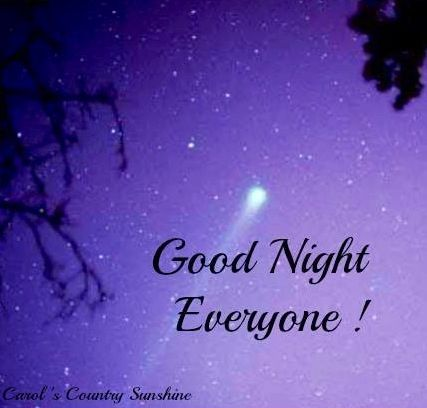 Good night everyone! via Carol's Country Sunshine on Facebook | Good night  greetings, Good night blessings, Good night