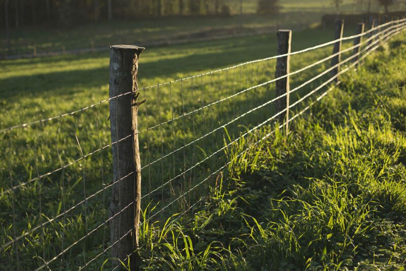 wood and wire fences | ... wire fencing. Branch wood is used as ...