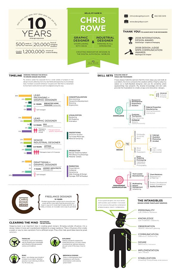 Resume Infographic by Chris Rowe, via Behance Infographic Visual - visual designer resume