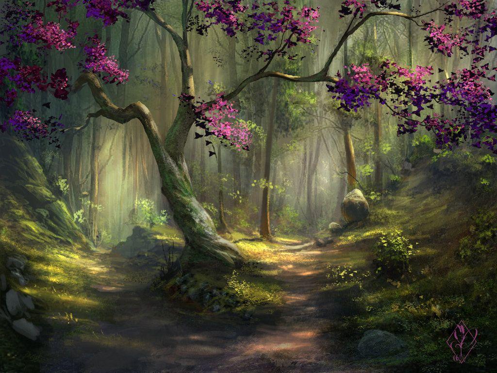 Foret Enchantee Illustration De Paysage Paysage Magnifique