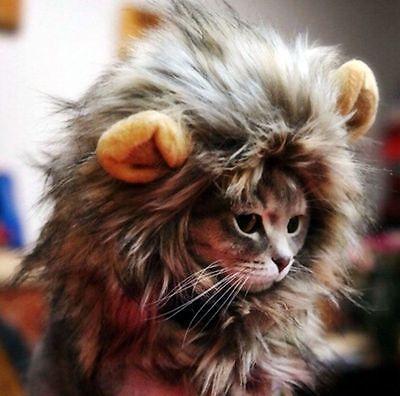 Cosplay Lion Mane Wig Cap Hat Halloween gif