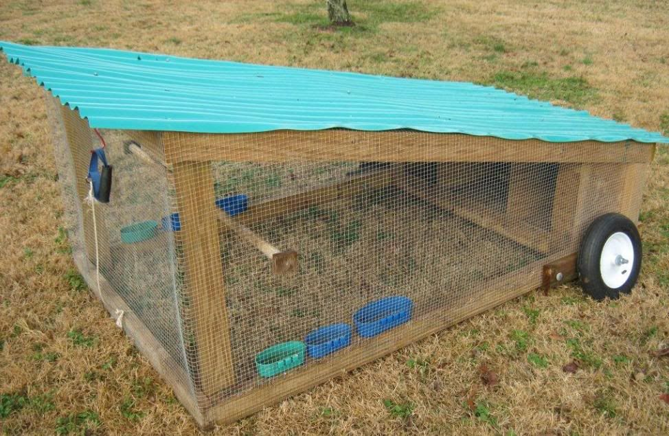 Design for a small portable chicken coop or chicken for Big chicken tractor