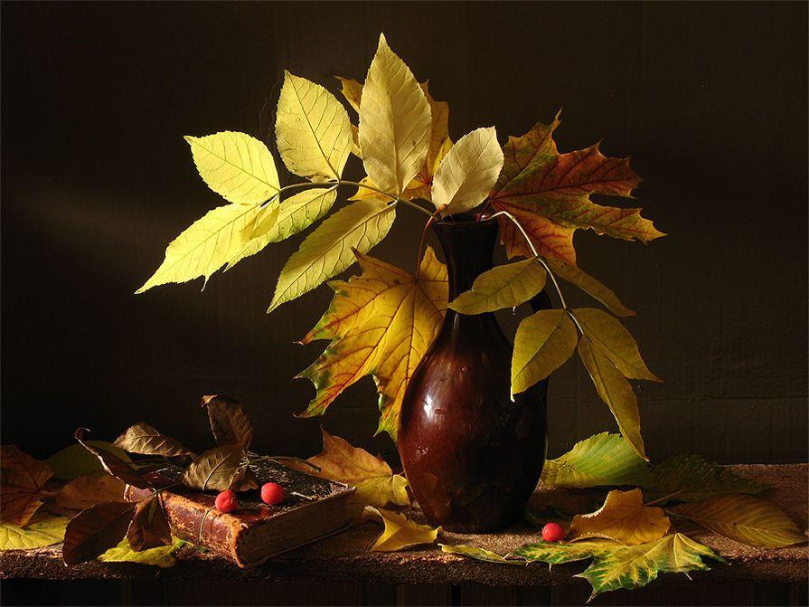 Составление рассказа про осень по картинкам меня