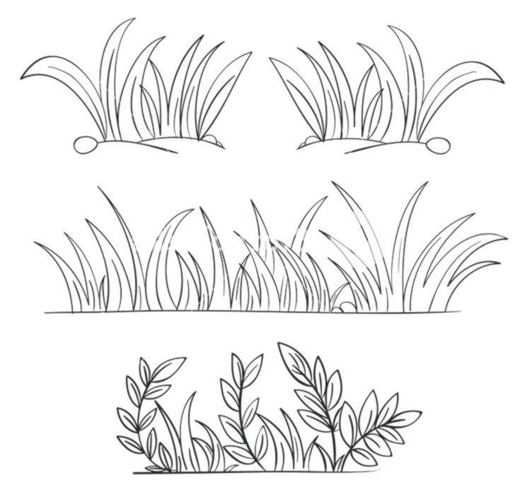 illustratie gras en planten contouren